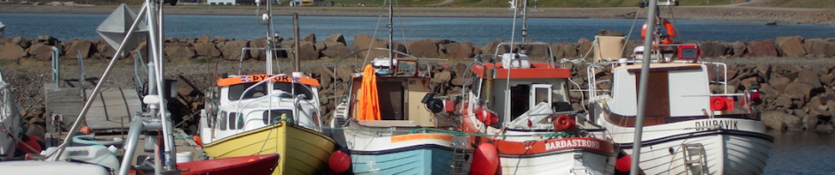 Small boats in the harbor. Photo by Catherine Chambers